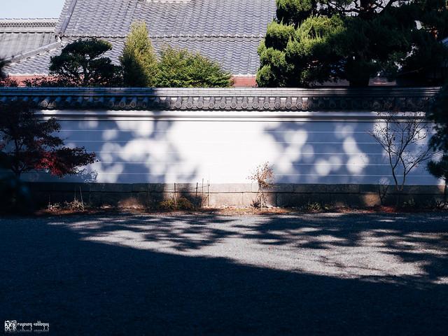 悠然自在的巡遊:Fujifilm GFX 50R | 39