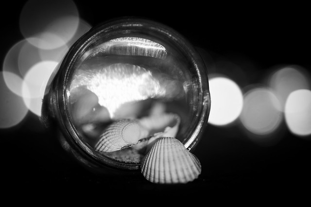 Little shells in a very small glass ... my entry for todays MacroMondays Theme