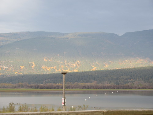 shuswap lake mountains light morning salmon arm bc british columbia canada