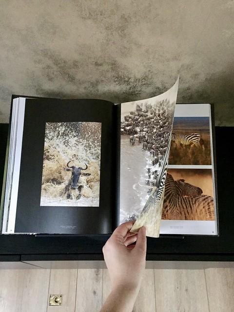 Bladeren in een natuurboek