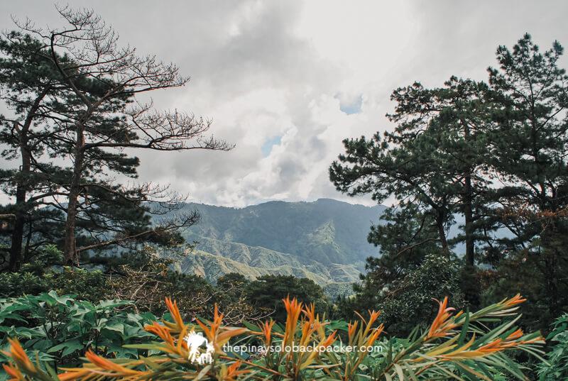 BAGUIO TOURIST SPOT: MINES VIEW PARK