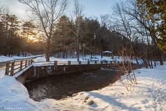 Saratoga Spa State Park in Winter
