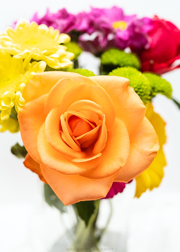 Flowers // 06/01/2020