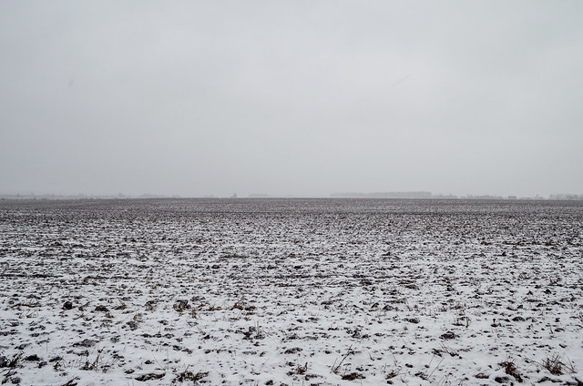 The first snow barely covered the field.