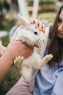 A young girl holding her rabbit