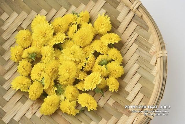 20191230-DAO_0003 菊花,特寫,有機,花瓣