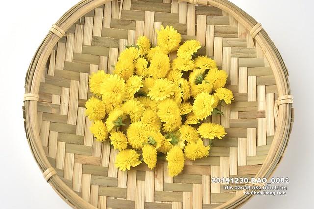 20191230-DAO_0002 菊花,特寫,有機,花瓣