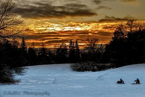 Landscape from the park Maisonneuve in Montreal, Qc.