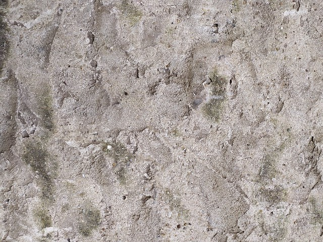 Wall texture - by TexturePalace.com