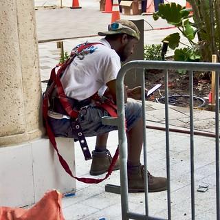 Workman in Harness