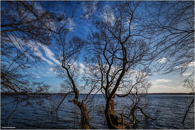am Großen Plöner See