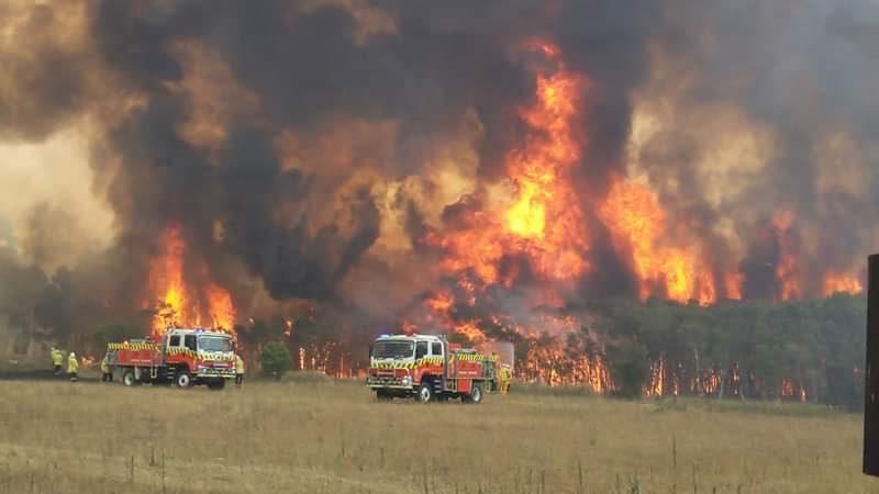 澳洲野火救災畫面