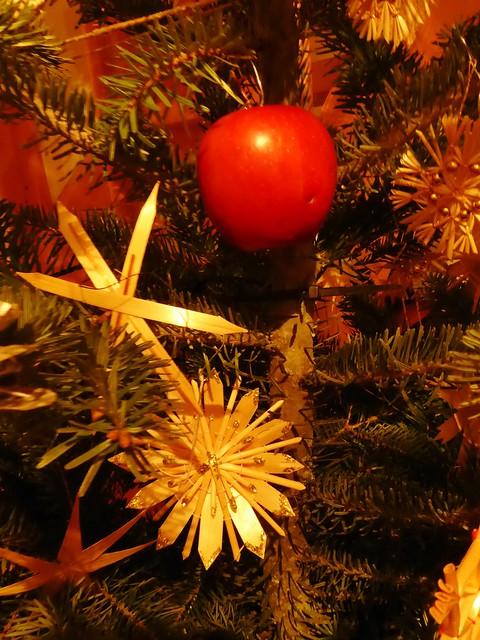 P1170292 Christmastree