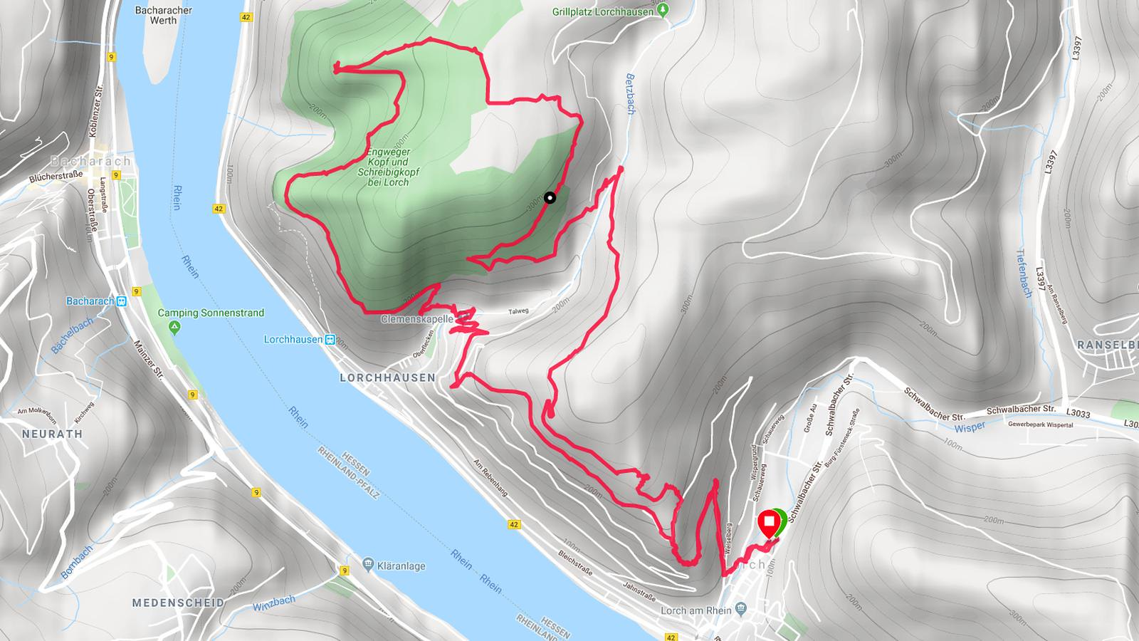Rhein-Wisper-Glück, Wisper Trails (Screenshot Garmin Connect/Google)