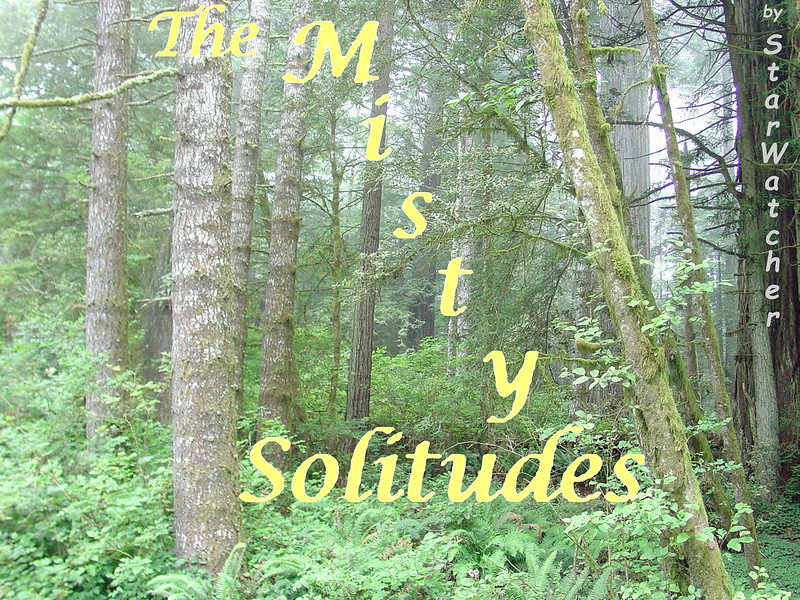 A view into a misty forest.  We see mostly tree-trunks, some splotched with moss, fading into the distance.  They rise out of a profusion of green, mostly ferny, growths.  Text reads 'The Misty Solitudes' slanting across the page.
