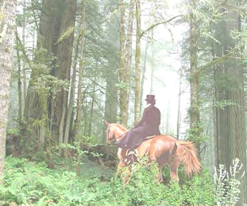 A view into a misty forest.  We see mostly tree-trunks, some splotched with moss, fading into the distance.  They rise out of a profusion of green, mostly ferny, growths.  In the middle foreground, a woman riding sidesaddle, wearing a black riding habit and top hat, is seated on a chestnut horse; they are heading away from the viewer, deeper into the forest.