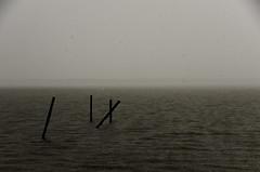 550 - Rainy Day