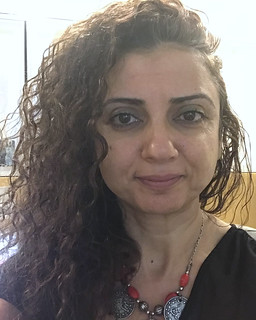 Ibtisam Azem, Al-Araby Al-Jadeed Newspaper - Member at Large, UN Correspondents Association Executive Team 2018-2020