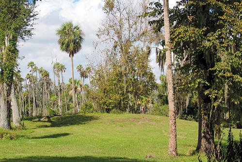 park trees landscape palmtrees historical mound florida crystalriver
