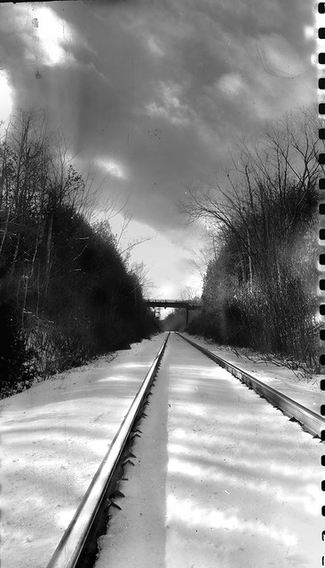 On The Rails Looking Home