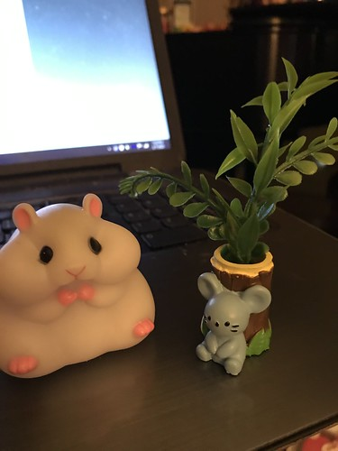 new desk friends