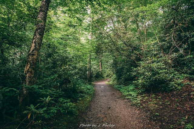 Chimney Tops Trail