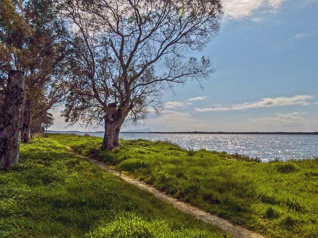Sentiero sulla sponda del lago di Fogliano
