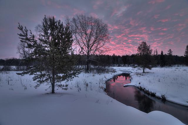 pink'n'cold