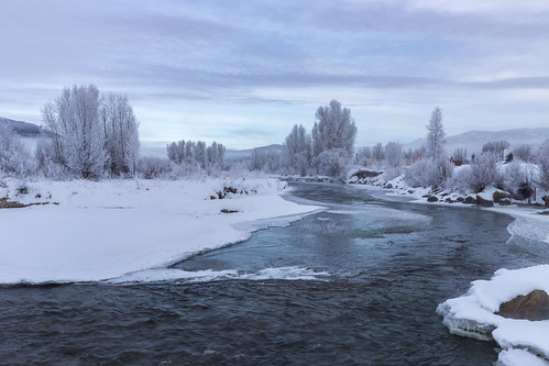 colorado usa nature water white tree snow river stream landscape frozen ice