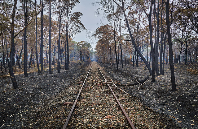 Buxton Railway - Southern Highlands - NSW