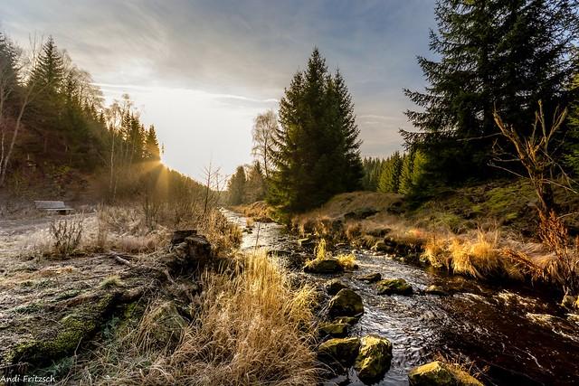 Ein frostiger Morgen im Schwarzwassertal
