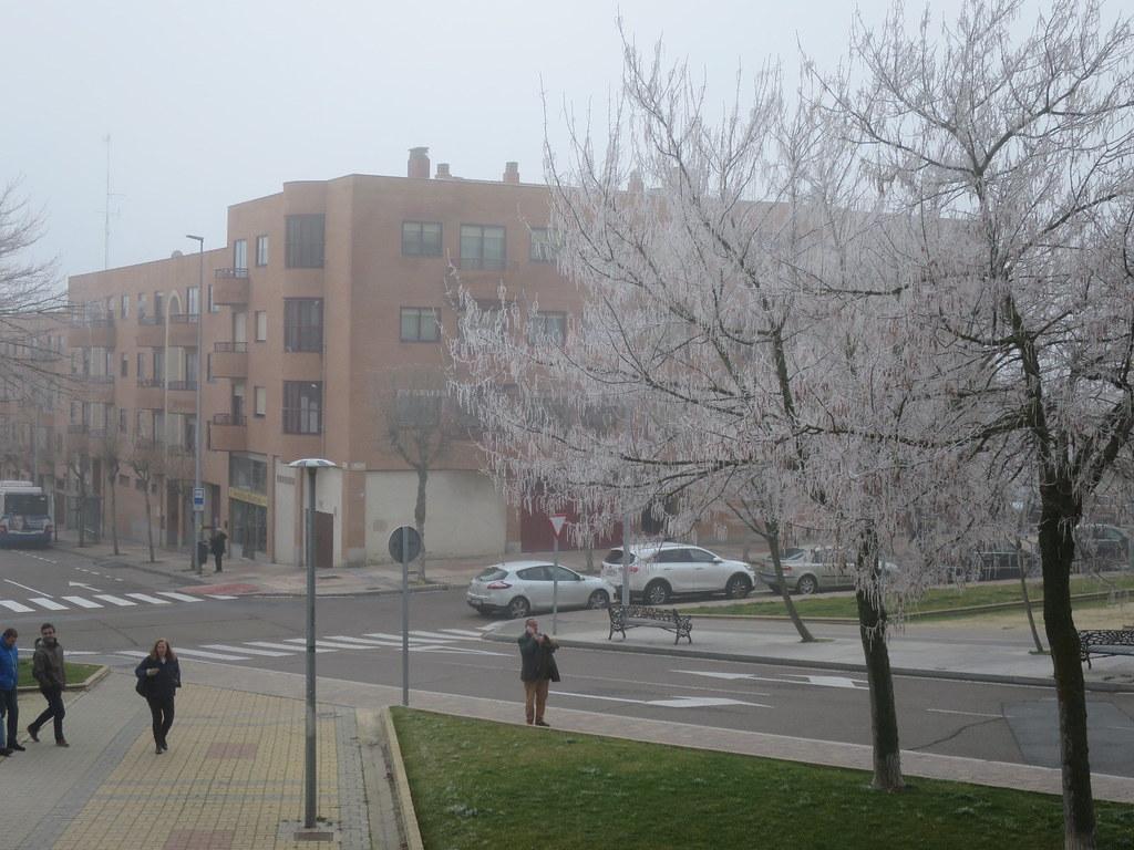 Niebla en Salamanca.  (12)