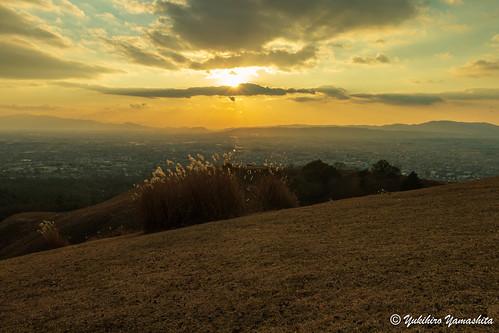 奈良 若草山 夕陽 sunset nara japan wakakusayama mountain winter ススキ