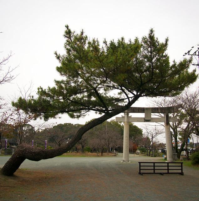 169-Japan-Yanagawa