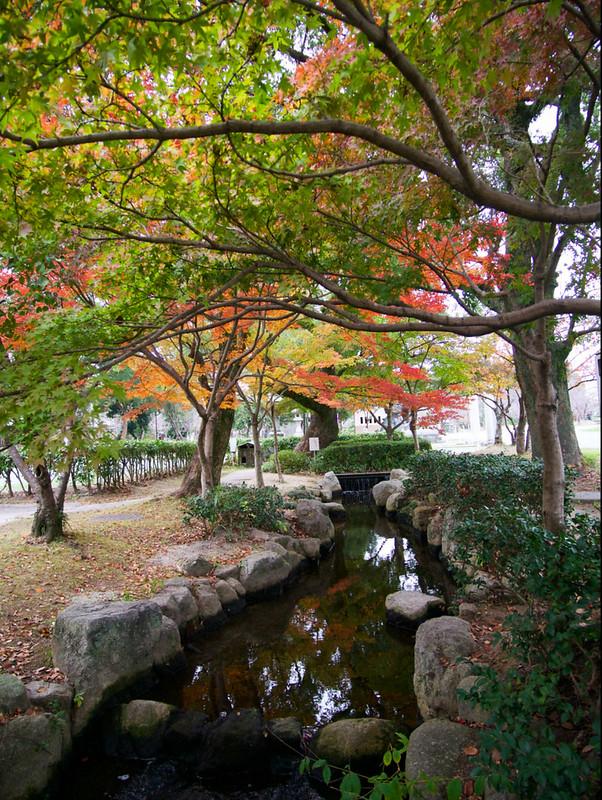 174-Japan-Yanagawa