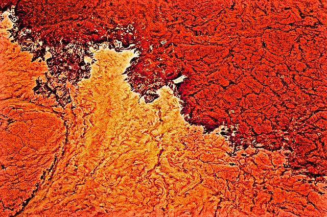 Shubenacadie sediment