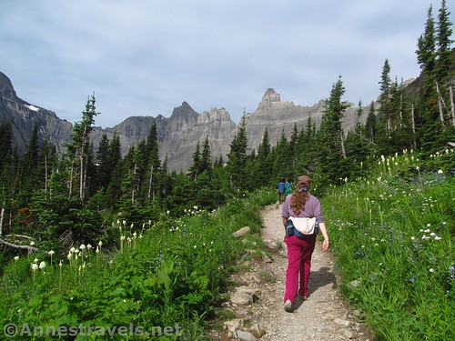 Hiking into the upper meadow section of the Iceberg Lake Trail, Glacier National Park, Montana