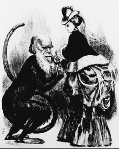 Darwin caricatura