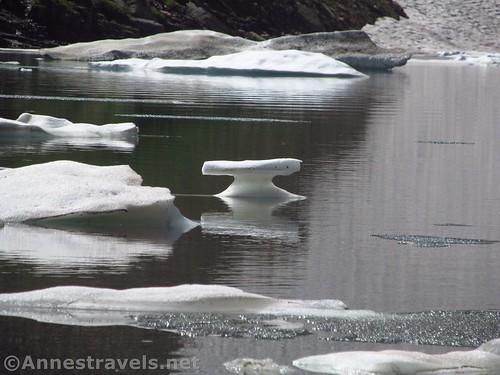 Odd-shaped iceberg in Iceberg Lake, Glacier National Park, Montana