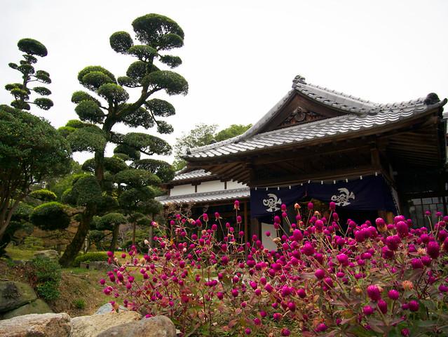 173-Japan-Yanagawa