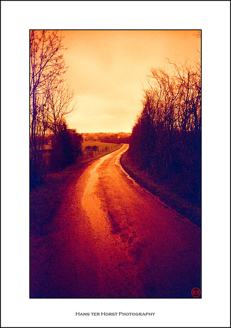 Country road on redscale film