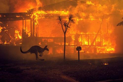 AUSTRALIA FIRES EXPLAINER 2