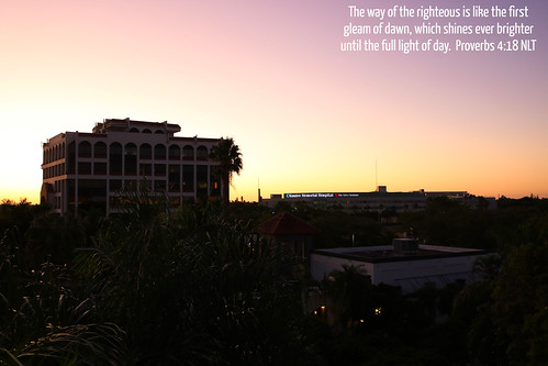 bradenton florida fl fla manateecounty sun sunlight sunrise morning am palm palmtrees trees treetops light horizon hospital office building skyline downtown city urban hotelview courtyardbymarriott manateememorialhospital landscape manatee silhouette cloudlesssky travel vacation hotel us usa unitedstates america dawn jesus christ lord god bible scripture verse proverbs