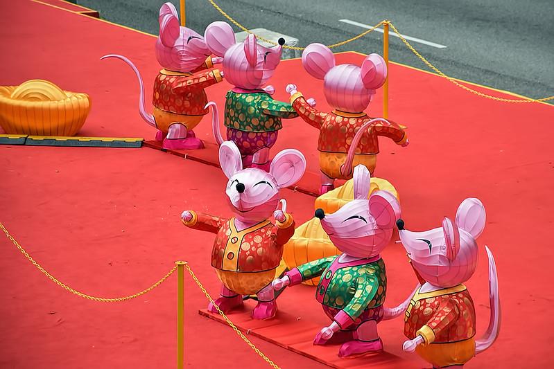 Rat lanterns