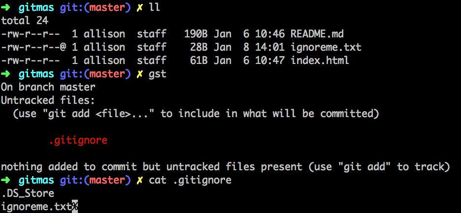 screenshot of terminal showing that ignored files don't show up when you git status