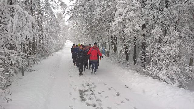 2:00/2:10 på snöig väg i Hagaparken