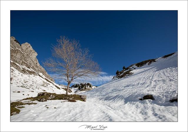 Darbon - Haute-Savoie (74)
