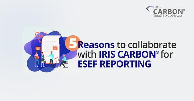ESEF Reporting