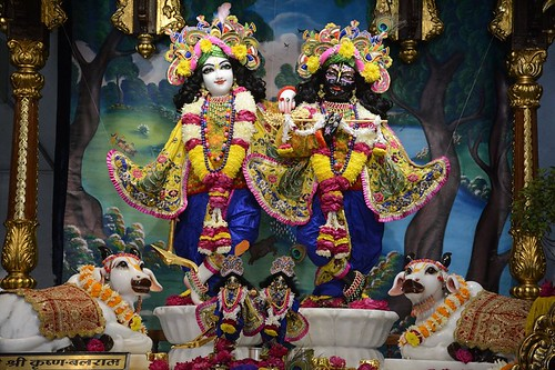 ISKCON Ujjain Deity Darshan 09 Jan 2020