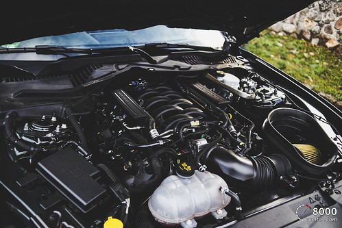 Ford Mustang Bullit - 8000vueltas-69